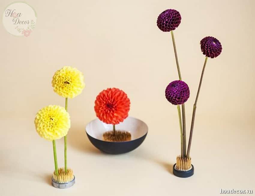 Bọt Xốp Cắm Hoa