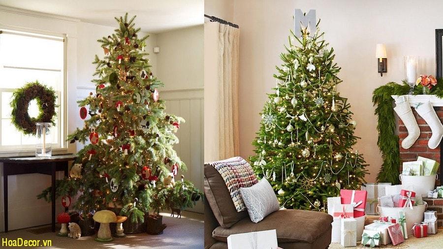 Cây Trang Trí Noel